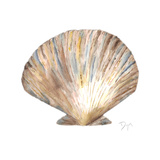 Sea Shell Neutral 2 Plakat av Beverly Dyer