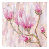 Tulip Tree 1 Posters av Beverly Dyer