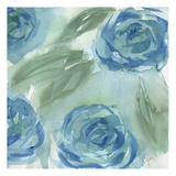 Blue Green Roses II Plakat av Beverly Dyer