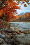 Autumn in New Hampshire, Riverside, Conway, Lincoln, Kancamagus Lámina fotográfica por Vincent James