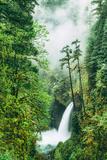 Dreamy Metlako and Fog in Spring, Waterfall Columbia River Gorge, Oregon Fotografisk trykk av Vincent James