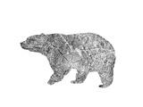 Bear Art by  Peach & Gold