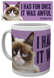 Grumpy Cat Fun Mug Taza