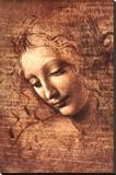 Female Head (La Scapigliata), c.1508 Stretched Canvas Print by  Leonardo da Vinci