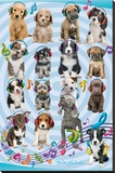 Keith Kimberlin Puppies Headphones 2 Bedruckte aufgespannte Leinwand von Keith Kimberlin