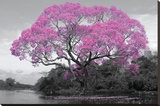 Tree - Blossom Bedruckte aufgespannte Leinwand