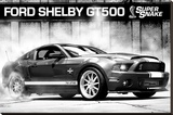 Ford Shelby - GT500 Supersnake Stretched Canvas Print