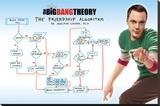 Big Bang Theory - Friendship Algorithm Opspændt lærredstryk