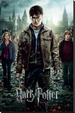 Harry Potter 7-Part 2 One Sheet Opspændt lærredstryk