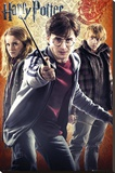 Harry Potter and the Deathly Hallows - Part II - Trio Stretched Canvas Print