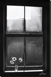 Hope (Window with Flowers) Stretched Canvas Print