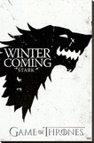 Game of Thrones - Winter is Coming - House Stark Stretched Canvas Print