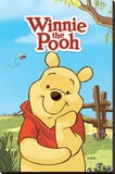 Winnie The Pooh (Pooh) Pingotettu canvasvedos