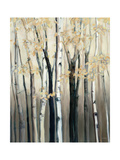 Golden Birch I Premium Giclee Print by Marilyn Hageman