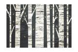Birch Forest Kunst av Michael Mullan
