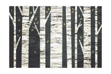 Birch Forest Posters by Michael Mullan