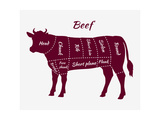 Scheme of Beef Cuts for Steak and Roast Prints by  robuart