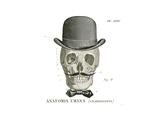 Dandy Bones IV Poster by Sue Schlabach