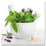 Fine Herbs I Poster