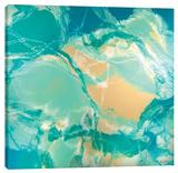 Ocean Floor Stretched Canvas Print by Barbara Biolotta