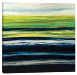 Emerald Horizon Stretched Canvas Print by Barbara Biolotta