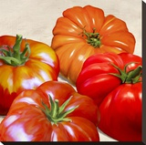 Tomatoes Stretched Canvas Print by Remo Barbieri