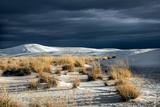 Barren Desert Landscape with Grasses under a Blue Sky Photographic Print by Jody Miller