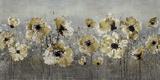 Silver Spring Prints by Tania Bello