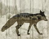 Camouflage Animals - Fox Poster par Tania Bello