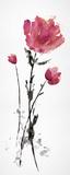 Floret Blush I Affiches par Tania Bello