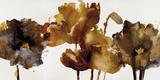Floral Rhumba II Prints by Tania Bello