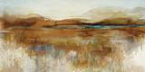 A Moorland Ramble Affiche par Paul Duncan