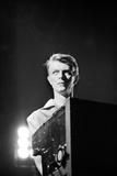David Bowie 1978 Fotografisk tryk af Allan Olley