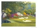 12th Hole at Augusta Kunstdruck von Charles White