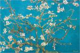 Almond Blossoms, 1890 Poster af Vincent van Gogh