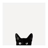 Nieuwsgierigheid, poster van kat met daarbij tekst: Curiosity Print van Jon Bertelli