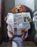 Dog Gone Funny Kunst von Lucia Heffernan