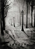 Escalier de la Butte Montmartre Plakater af  Brassaï