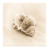 Il Oceano No. 3 Prints by Alan Blaustein