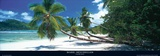 Mahe, Seychelles Posters af Granville Harris