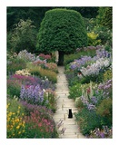 The Garden Cat Prints by Greg Gawlowski