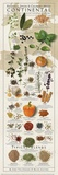 Regional Spices - Continental Prints by  Ziegler/Keating