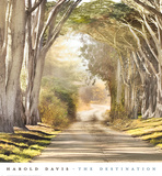 The Destination Print by Harold Davis