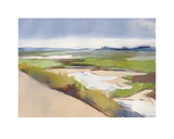 Walberswick Marsh Prints by Charlotte Evans