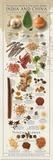 Regional Spices - India & China Kunstdrucke von  Ziegler/Keating