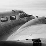 Vintage Flight II Poster von Janet Van Arsdale
