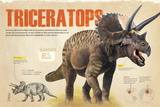 Infographic About Thetriceratops, Dinosaur from the Cretaceous Period of the Mesozoic Era Pôsters