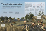 Infographic About the Development Agricultural and Farming Techniques of the Neolithic (8000 BC) Pôsters