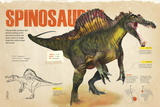 Infographic About the Spinosaurus, a Carnivorous Dinosaur from the Cretaceous Period Pôsters