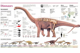 Infographic of the Anatomy of Argentinosaurus and Classification and Evolution of Dinosaurs Pôsters